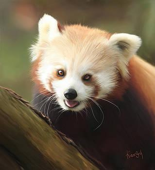Panda by Johanne Dauphinais