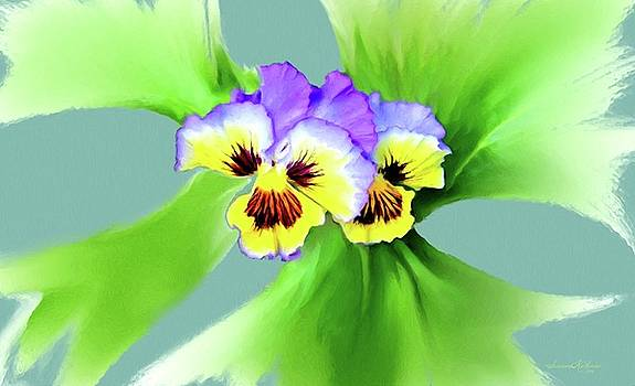 Pansy Flowers 3 Blue by Susanna  Katherine