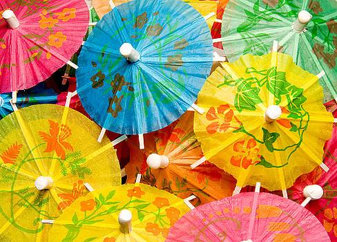 Paper Parasol by Rob Byron