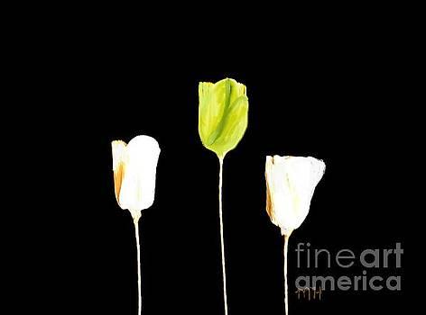 Paper Tulips Three Green by Marsha Heiken