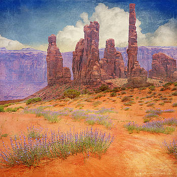 Paprika Sands At Monument Valley by R christopher Vest