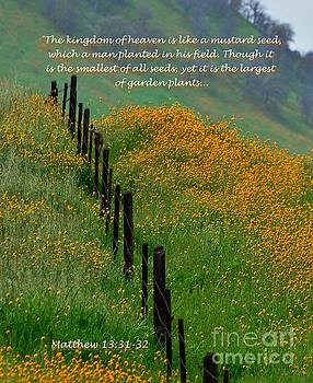 Parable of the Mustard Seed by Debby Pueschel