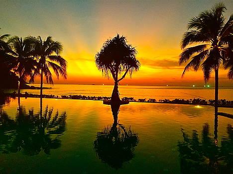 Paradise by Dorota Nowak