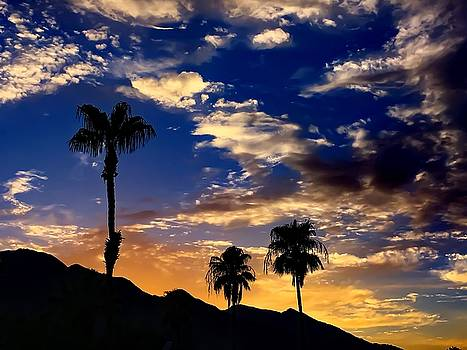 Paradise Palm Springs by Chris Tarpening