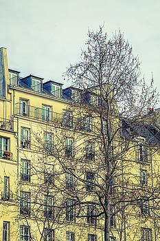 Paris Building by Andrew Soundarajan