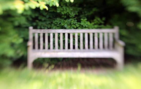 Carolyn Stagger Cokley - park bench