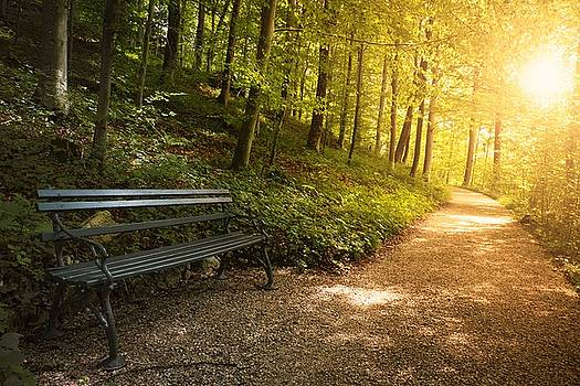 Park Bench In Fall by Chevy Fleet
