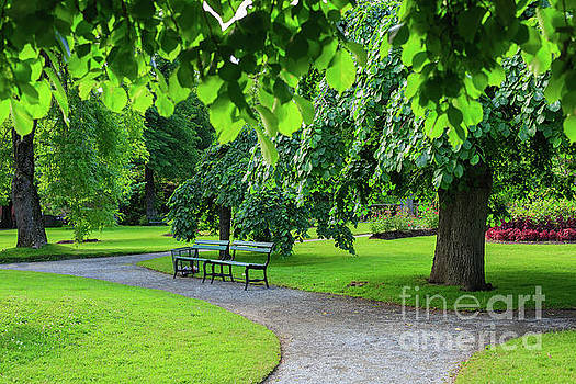 Park Bench by Verena Matthew