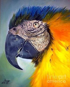 Parrot - 2016  by MEGO Gocha Medzmariashvili