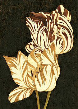 Parrot Tulips Abstract by Cate McCauley