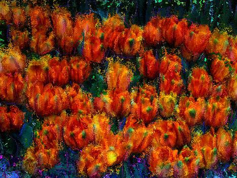 Parrot Tulips by Jeff Breiman