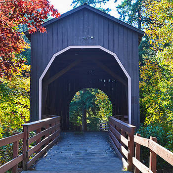 Pass Creek Covered Bridge by Ansel Price