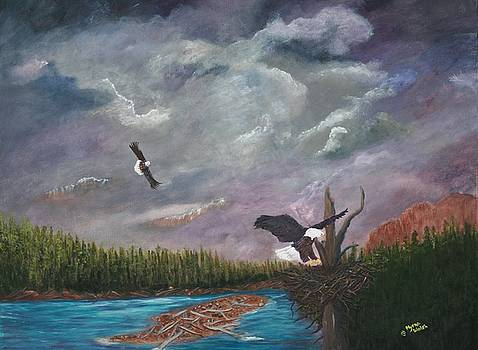 Passing Storm by Myrna Walsh