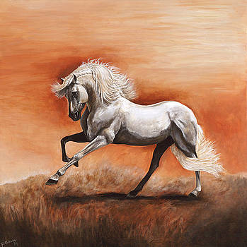 Passion by Paula Collewijn -  The Art of Horses