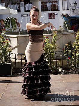 Passionate Dancer by Brenda Kean