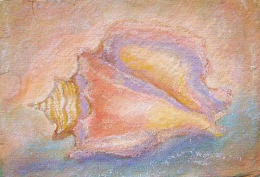 Pastel Bahamian Conch Shell by Phyllis OShields