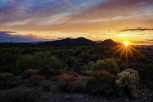 Saija Lehtonen - Pastel Sonoran Skies