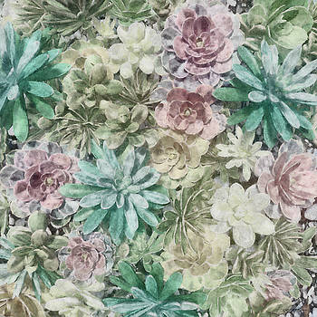 Cynthia Decker - Pastel Succulents