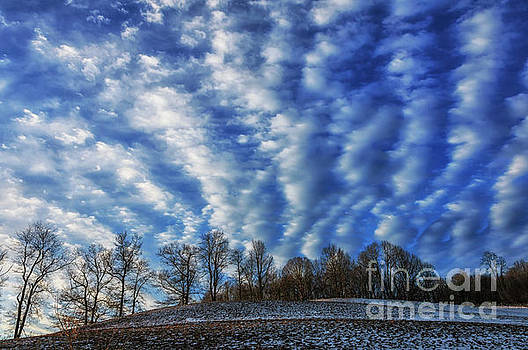 Pasture Field and Winter Sky by Thomas R Fletcher