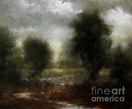 Pasture Stream by Larry Preston