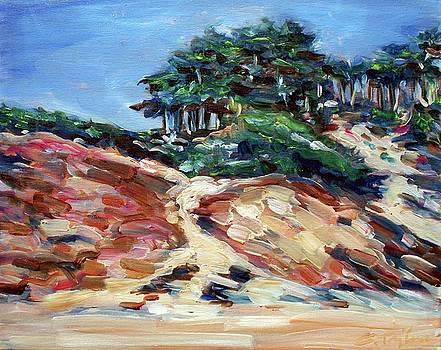 Path to Baker Beach by Sheila Tajima