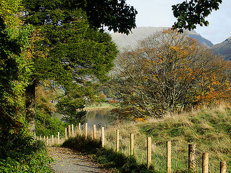 Path to Grasmere by Susan Tinsley