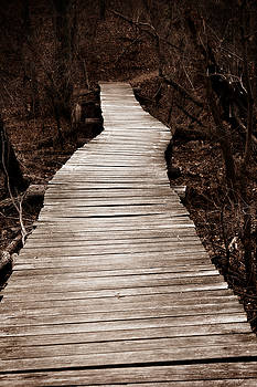 Path to Nowhere by Jeannie Burleson