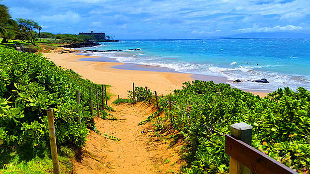 Path to Paradise, Hawaii  by Michael Rucker