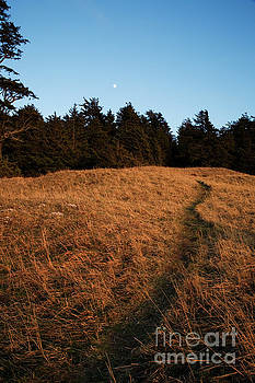 Charmian Vistaunet - Path to the Moon