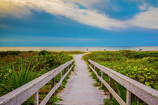 Path To The Sea by Steven Ainsworth