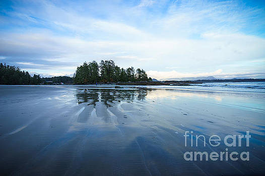 Paths in the Sand by Carrie Cole