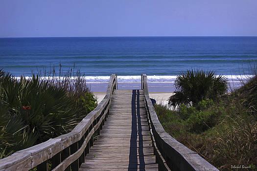 Deborah Benoit - Pathway To The Beach