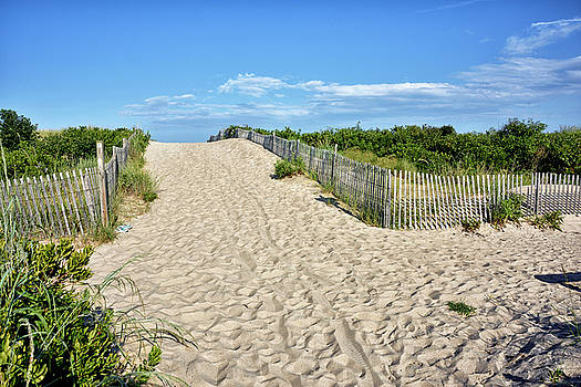 Pathway to the beach - Delaware by Brendan Reals