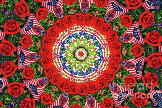 Patriotic Circle by Geraldine DeBoer