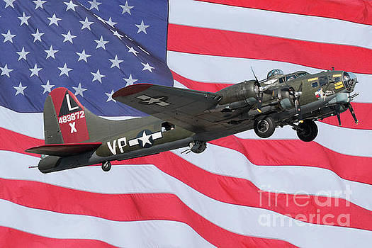 Patriotic Flight by Geraldine DeBoer