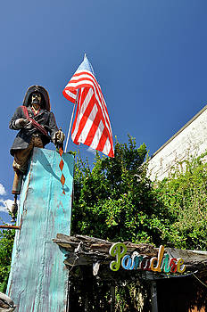 Patriotic Pirate in Paradise by David Dittmann