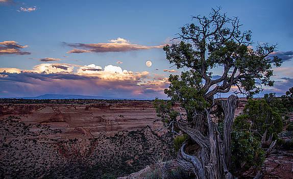 Peace on the Plateau  by JT Dudrow