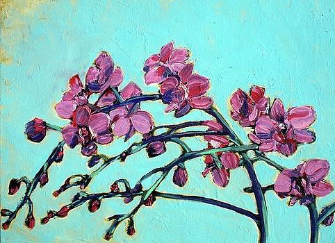 Peace Orchids by Sheila Tajima
