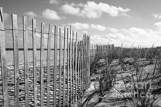 Peaceful Beach Scene by Denise Pohl