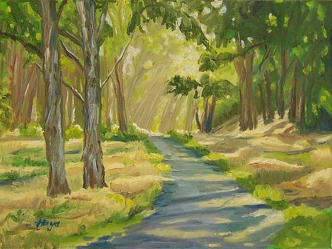 Peaceful Path by Donna Hays