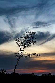 Peaceful  by Ramabhadran Thirupattur