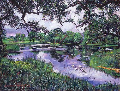 David Lloyd Glover - PEACEFULL LAKE