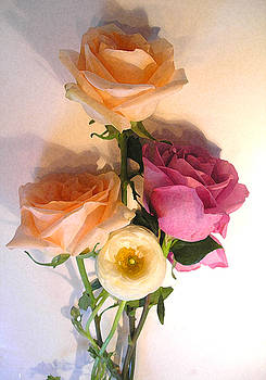 Peach Roses In Shadow by Lisa Fatone