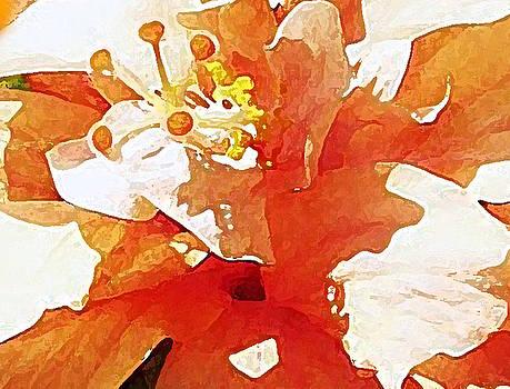 Peaches Watercolor by Djl Leclerc