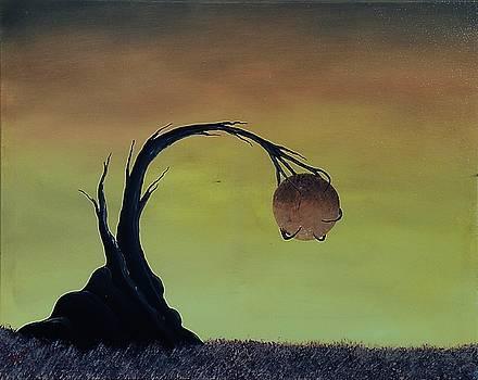 Pearl by Edwin Alverio