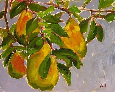 Pears by Mary McInnis