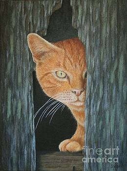 Peeking Out by Sid Ball