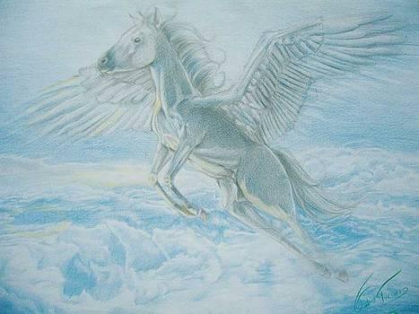 Pegasus by Fabio Turini