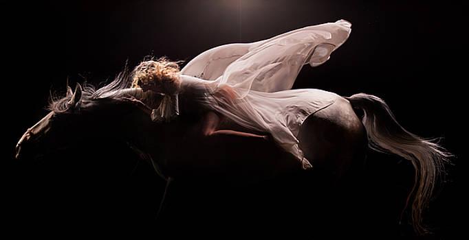 Pegasus Full by Dario Infini