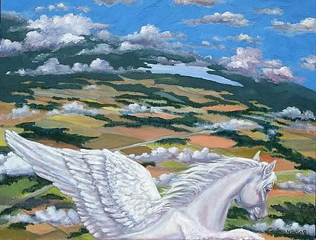 Pegasus View by Elizabeth Lane